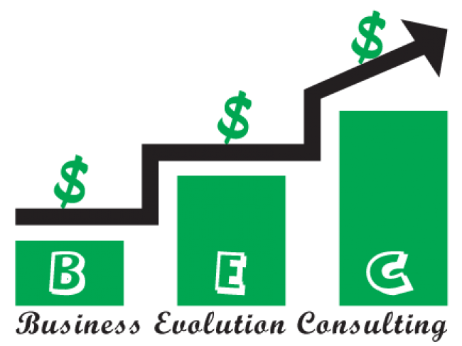 Business Evolution Consulting
